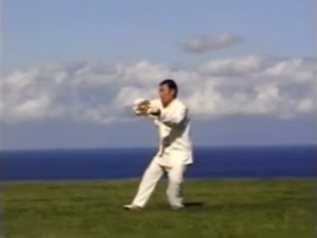 Chen Xiaowang 19 movements (Chen Taijiquan video-memo)